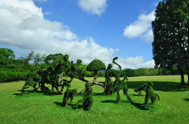 A group of topiary art sculptures on a large open field