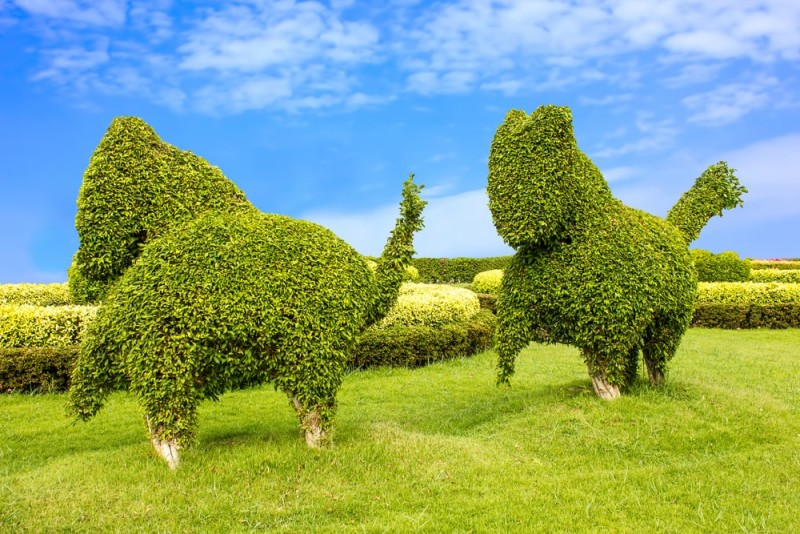 Animal shaped tree sculptures in the garden