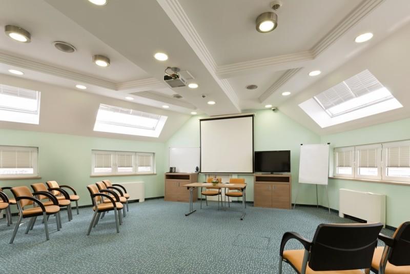 Loft Room Decorating Ideas for Unused Ceiling attic space