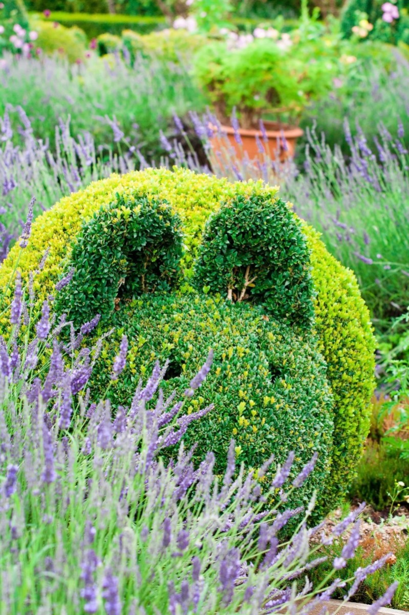 Stunning cat shaped bush sculpture set in a beautiful park