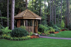 Landscape and Garden Design Ideas