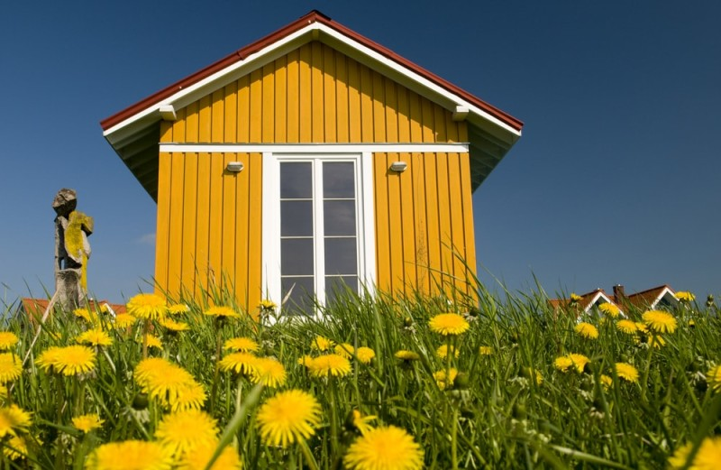 Cheerful garden room outhouse set in a spring meadow