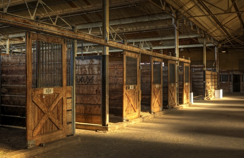 Empty wooden stalls with sunlight rays in horse barn