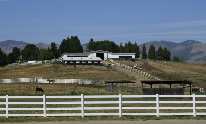 Wider view of an horse equestrian farm