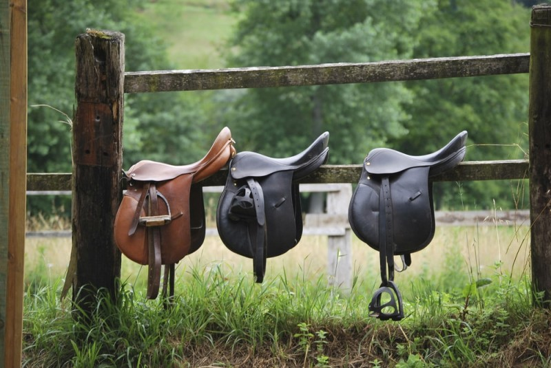 Leather saddles ready to put on the horseback
