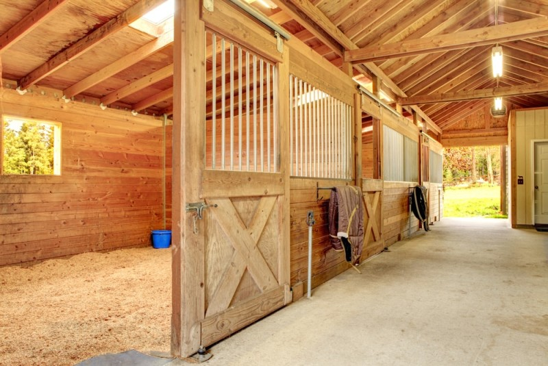 Stable barn with beam ceiling and open door to a clean stall min e1436991935907 - Horseback Riding Ranch, Horse Stables, Barns and Facilities