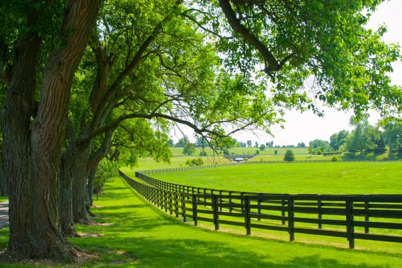 horse farm property fencing min e1436992171184 - Horseback Riding Ranch, Horse Stables, Barns and Facilities