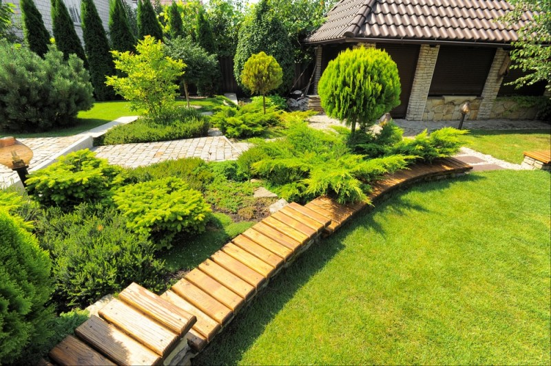 Nice landscape design of a rear yard with tiered timber edging and coniferous plantings