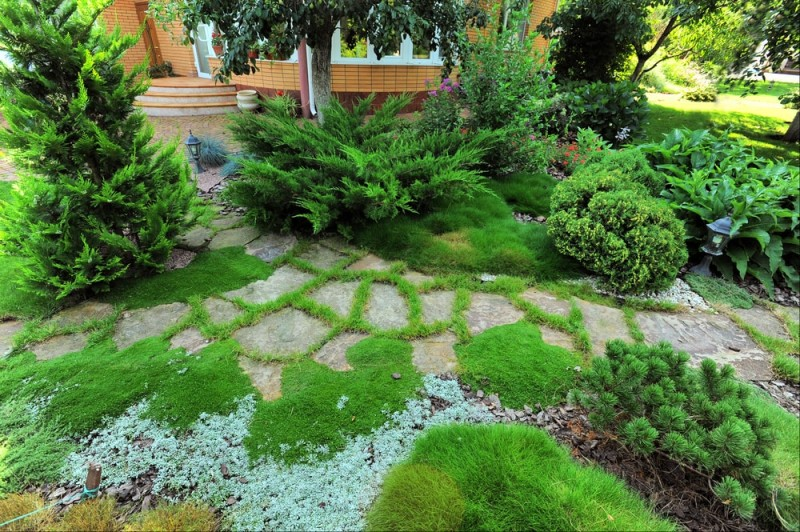 Lovely front of house landscaped garden with paving stones and plantings