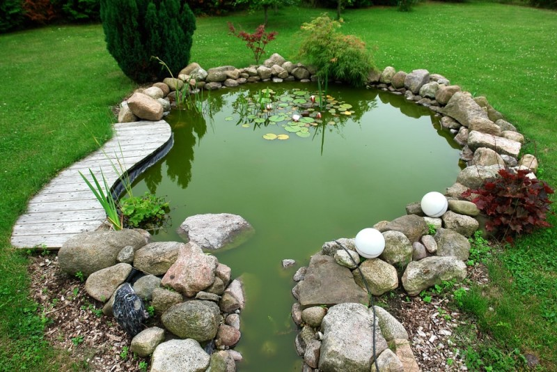 Beautiful classical design garden fish pond in a well cared backyard gardening background min e1440358873926 - Backyard Pond Designs