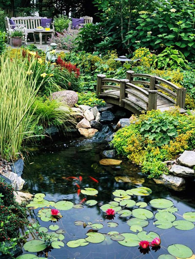 Backyard pond designs for Koi pond garden