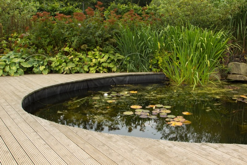 garden pond with decking min e1440360294854 - Backyard Pond Designs