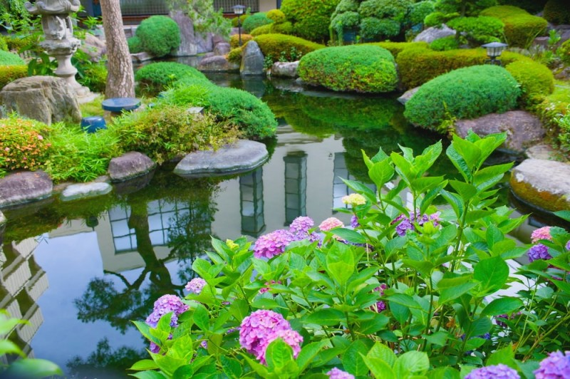 garden with pond min e1440358574678 - Backyard Pond Designs