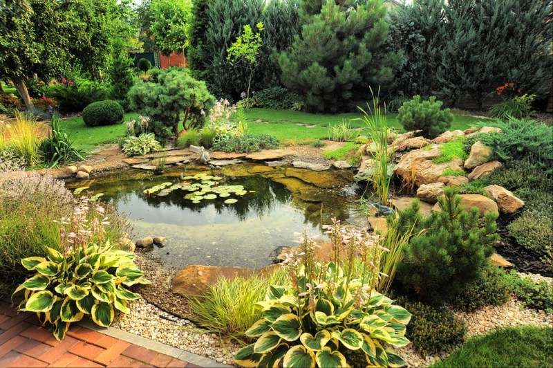 landscape design with pond min e1440360384384 - Backyard Pond Designs