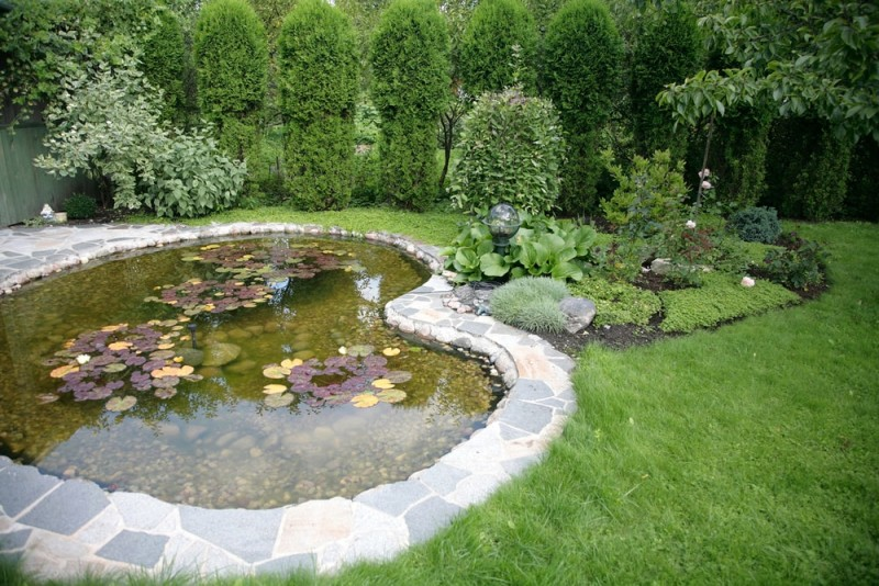 pond with water lily beautiful element landscape min e1440358798379 - Backyard Pond Designs
