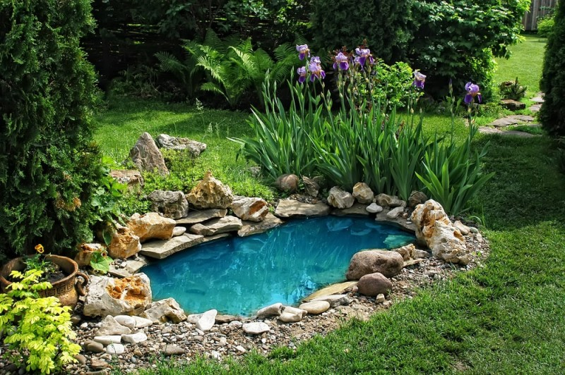 small pond on a summer day in the garden min e1440359226920 - Backyard Pond Designs