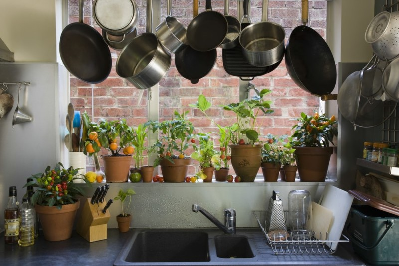 Saucepans hanging over sink against potted plants on window sill in domestic kitchen min e1443807883551 - Kitchen Pot Shelves and Hanging Pot and Pans