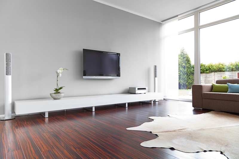 This modern living room and a highly grained hardwood floor