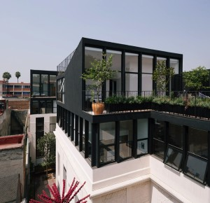 Sunflower House Renovation Project, Mexico