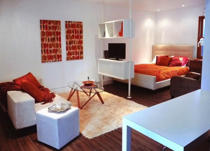 Design Ideas For Studio Apartments small apartment design ideas 1000 images about studio apartment layout amp design ideas on photos Small Apartment With Combined Living Bedroom Areas And Shelf Room Divider