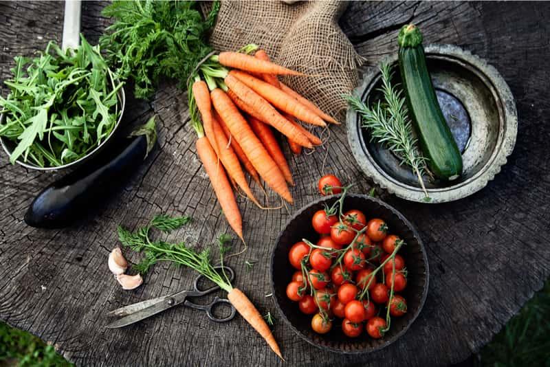 A selection of garden grown vegetables