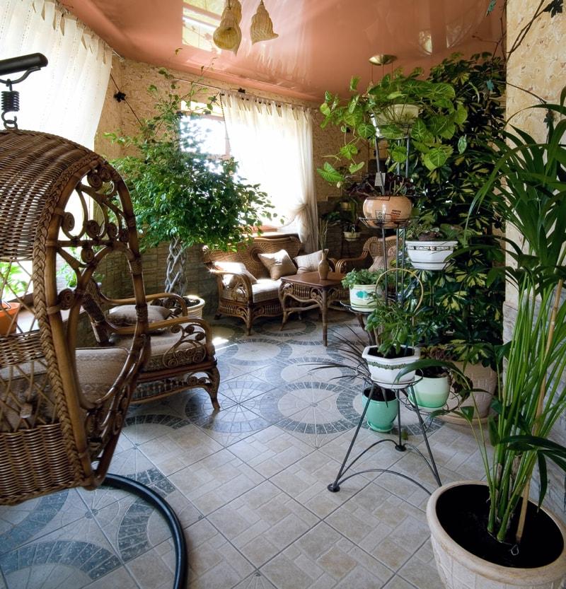 Indoor house plants and pot plants for Indoor garden design twitter
