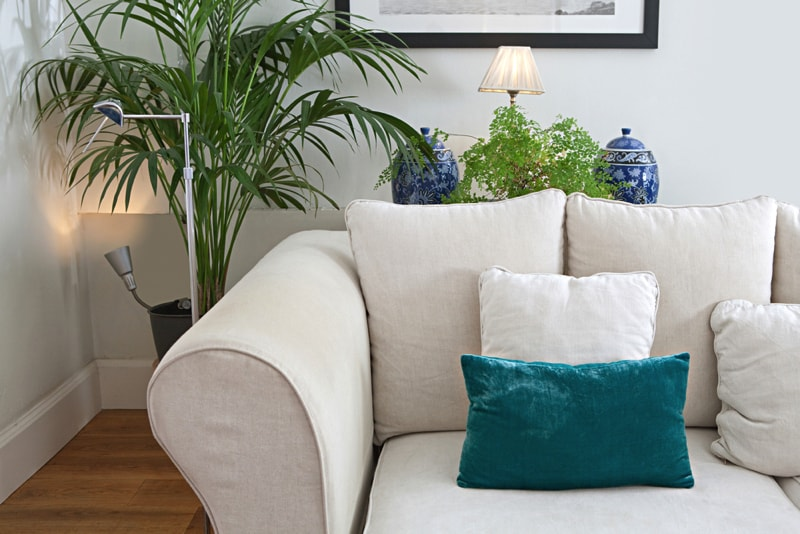 Living room home interior with a white sofa wooden floors decorative vases - 5 Secrets to a Healthy Home