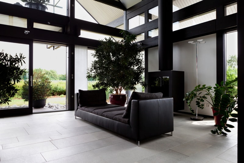 Indoor house plants and pot plants for Modern living room plants