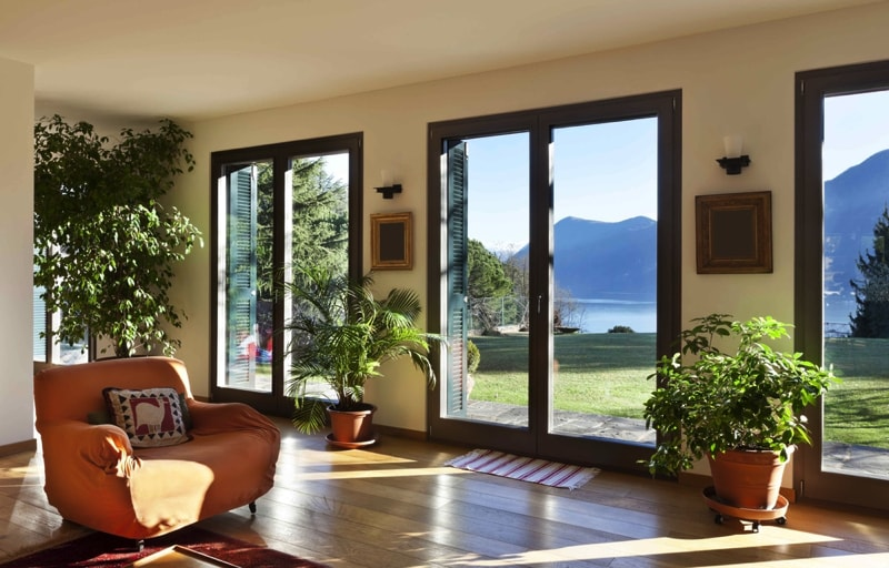 Indoor house plants - Beautiful house plants ...