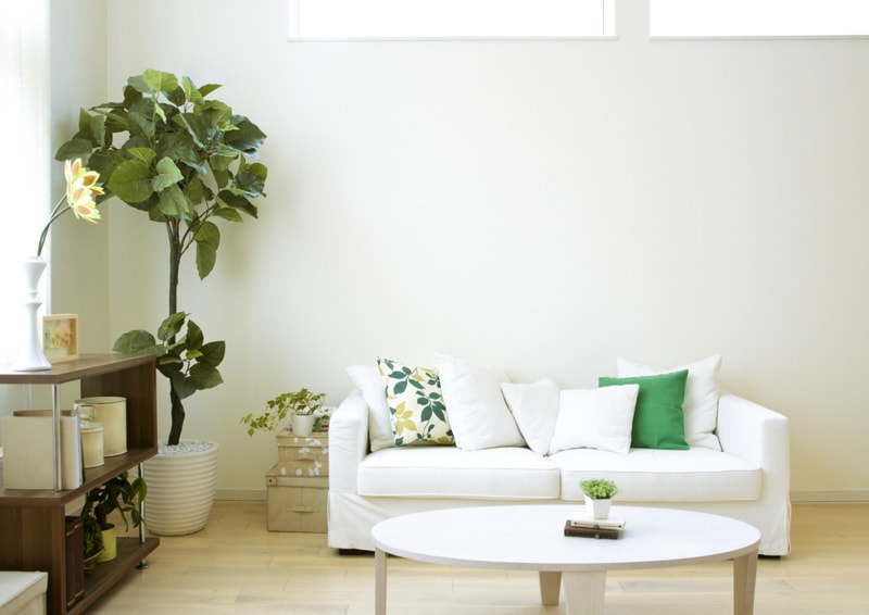 Living Room Interior With Plant Min   Indoor House Plants Part 82