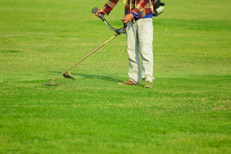 Mowing - How to Renovate an Ugly Old Lawn