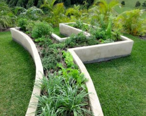 Raised Bed Gardening Designs