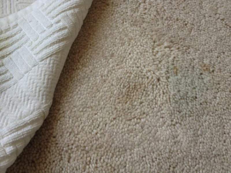 carpet stains3 800 min - 23 DIY Ideas To Clean Up Your Home
